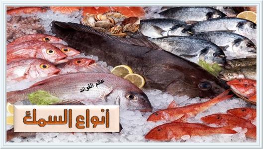 أنواع الأسماك
