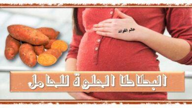 البطاطا الحلوة للحامل