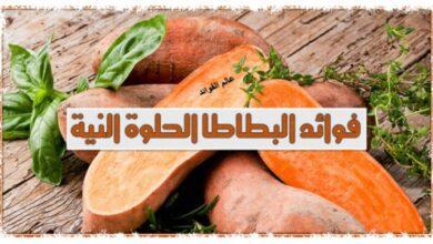 فوائد البطاطا النيئة