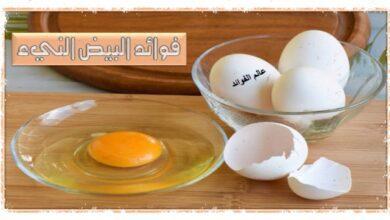 فوائد البيض النيء