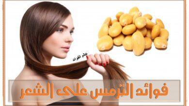 فوائد الترمس على الشعر