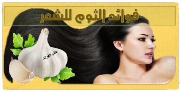 فوائد للثوم على الشعر
