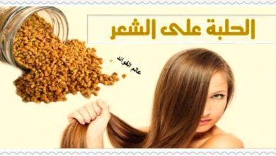 فوائد الحلبة على الشعر