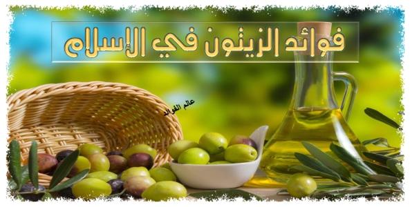 فوائد الزيتون في الاسلام