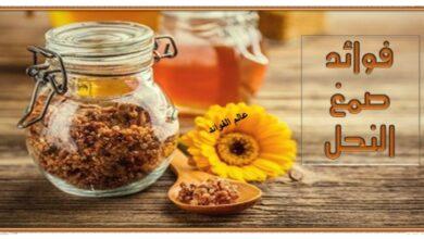 فوائد صمغ النحل