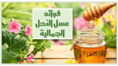 فوائد عسل النحل الجمالية