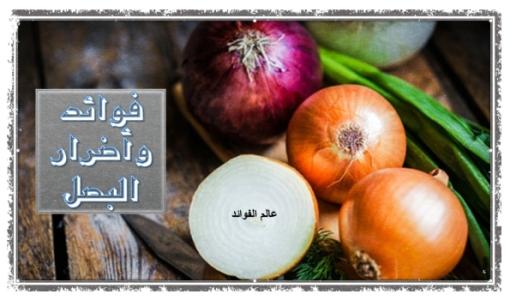 فوائد واضرار البصل